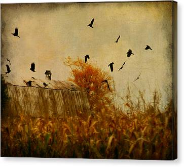 Autumn Cornfield Canvas Print by Gothicrow Images