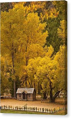 Autumn Cottage Canvas Print by Graeme Knox