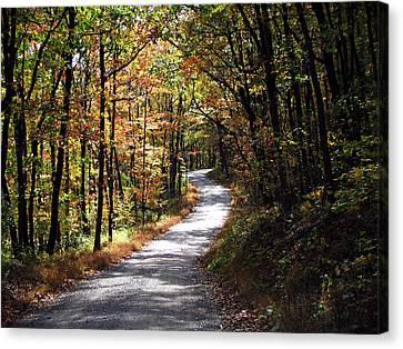 Autumn Country Lane Canvas Print by David Dehner