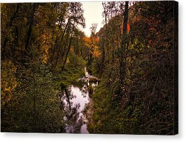 Autumn Creek  Canvas Print by Saija  Lehtonen
