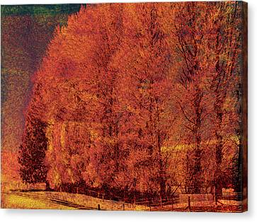Autumn Days Canvas Print