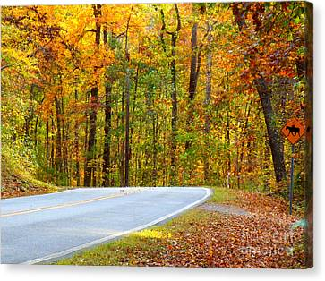 Canvas Print featuring the photograph Autumn Drive by Lydia Holly