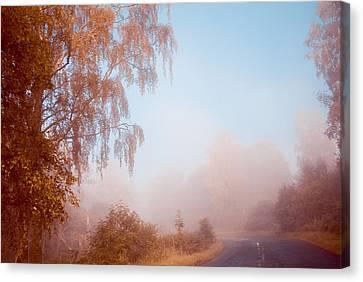Autumn Fairytale. Misty Roads Of Scotland  Canvas Print by Jenny Rainbow