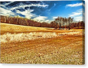 Autumn Field Canvas Print by HD Connelly