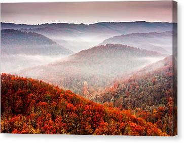 Autumn Fogs Canvas Print by Evgeni Dinev