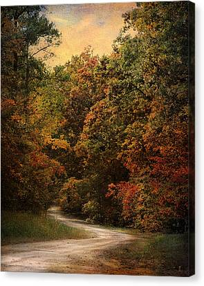 Autumn Forest 1 Canvas Print by Jai Johnson