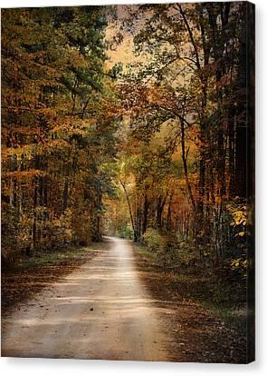 Autumn Forest 3 Canvas Print by Jai Johnson
