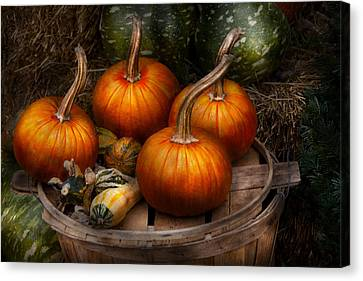 Autumn - Gourd - Pumpkins And Some Other Things  Canvas Print by Mike Savad
