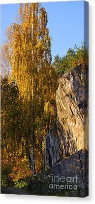 Autumn Grace Canvas Print by Lutz Baar