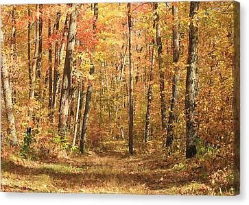 Canvas Print featuring the photograph Autumn In Minnesota by Penny Meyers