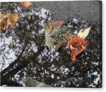 Autumn In New York City Canvas Print by Chris Ann Wiggins