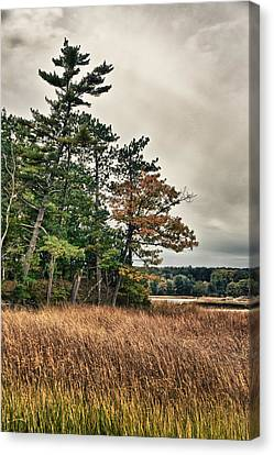 Autumn In Nh Canvas Print by Edward Myers