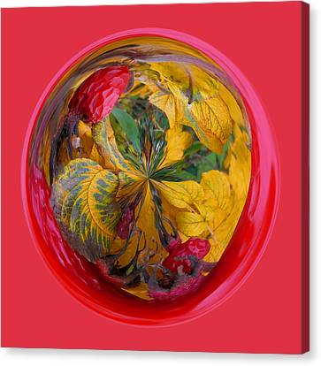 Autumn In The Sphere Canvas Print by Robert Gipson