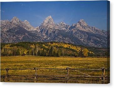 Autumn In The Tetons Canvas Print by Andrew Soundarajan