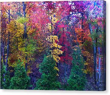 Autumn In Virginia Canvas Print by Nabila Khanam