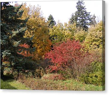 Canvas Print featuring the photograph Autumn Landscape  by Bogdan Floridana Oana