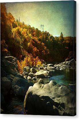Autumn Lights Canvas Print