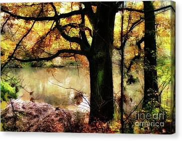 Autumn Oak Tree Canvas Print