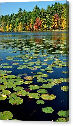 Autumn On The River Canvas Print by Rick Frost