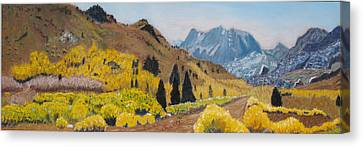 Autumn On The Road Less Traveled Canvas Print