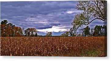 Autumn Overcast 12 Canvas Print by Dave Dresser