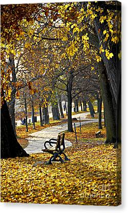 Bicycle Canvas Print - Autumn Park In Toronto by Elena Elisseeva