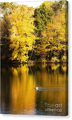 Autumn Pond Canvas Print by Leslie Leda