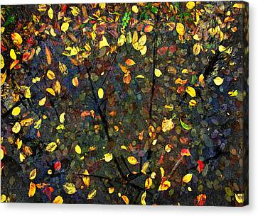 Autumn Reconstructed Canvas Print by David Clanton