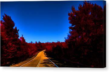 Autumn Red Canvas Print by Douglas Barnard