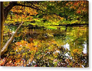 Autumn Reflection Canvas Print by David Hahn