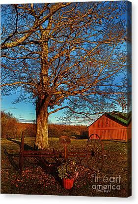Autumn Rest Canvas Print by Diane E Berry