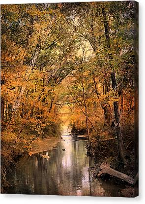 Autumn Riches 2 Canvas Print by Jai Johnson