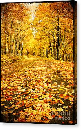 Autumn Road Canvas Print by Darren Fisher