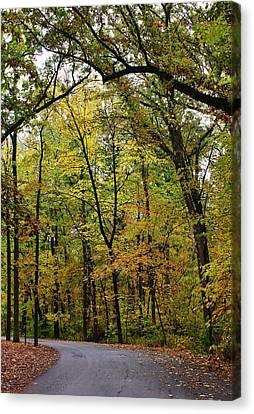 Lowden State Park Canvas Print - Autumn Sensation by Bruce Bley