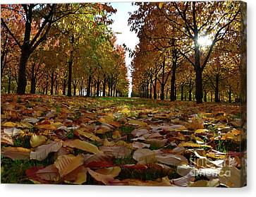 Autumn Sheets Carpet Canvas Print