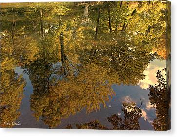 Autumn Sky Reflection Canvas Print by Debra     Vatalaro