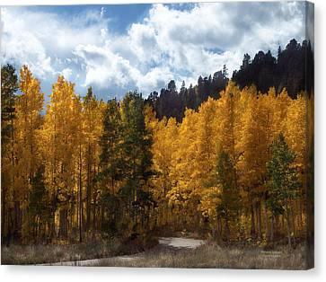 Autumn Scene Canvas Print - Autumn Splendor by Carol Cavalaris
