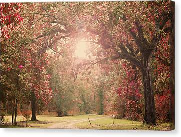 Autumn Splendor Canvas Print by Susan Bordelon