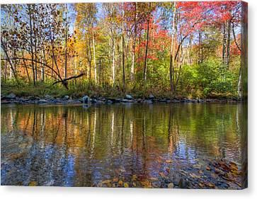 Autumn Stream Canvas Print by Debra and Dave Vanderlaan