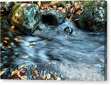 Autumn Stream Canvas Print by HD Connelly
