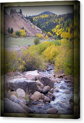 Canvas Print featuring the photograph Autumn Stream by Michelle Frizzell-Thompson