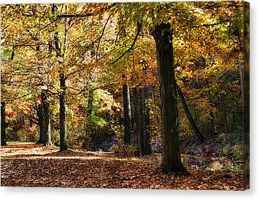 Autumn Stroll Canvas Print by Peter Chilelli
