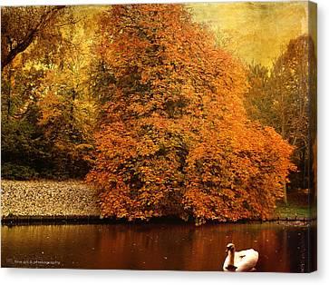 Autumn Swan - Red Leaves Canvas Print by Yvon van der Wijk