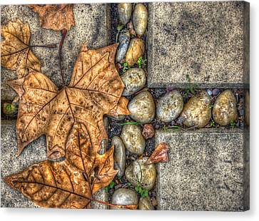 Autumn Texture Canvas Print by Wayne Sherriff