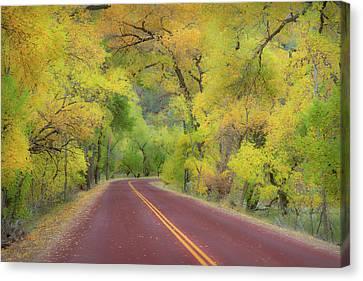 Autumn Trees On Road Canvas Print by Royce Bair