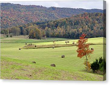 Autumn Valley Hay Bales Canvas Print