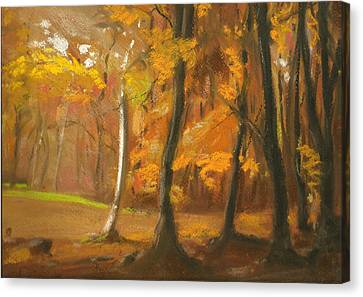 Autumn Woods 5 Canvas Print by Paul Mitchell
