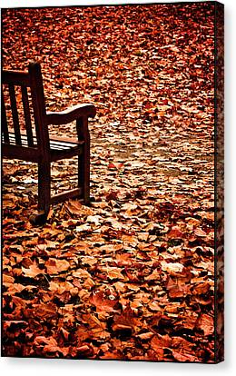 Autumnal Colours Canvas Print by Lenny Carter