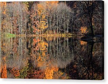 Autumns Art Canvas Print by Karol Livote