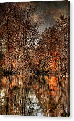 Autumn's End Canvas Print by Paul Ward
